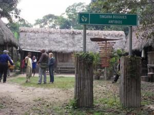 tingana ecotourism moyobamba peru