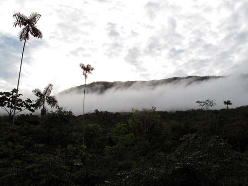 View form eco-lodge Cabanas Yankuam