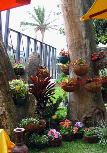 Medellin – Jardin Botánico